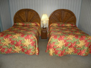 20 bed 2